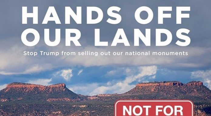 Leonardo DiCaprio Instagram:    BREAKING NEWS: Trump just announced plans to shrink Bears Ears and Grand Stai...