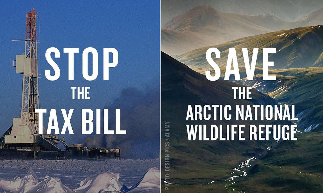 Leonardo DiCaprio Instagram: Help  stop the pro-polluter tax bill, and help save the Arctic National Wildlife...
