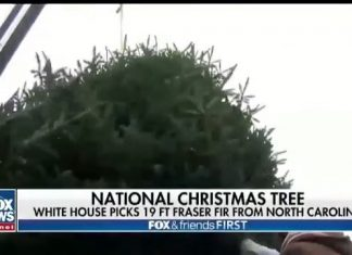・・・ The White House has chosen this year's Christmas tree!...