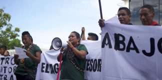 A groundbreaking victory for indigenous rights in the upper Amazon!⠀ ⠀ The Ko...