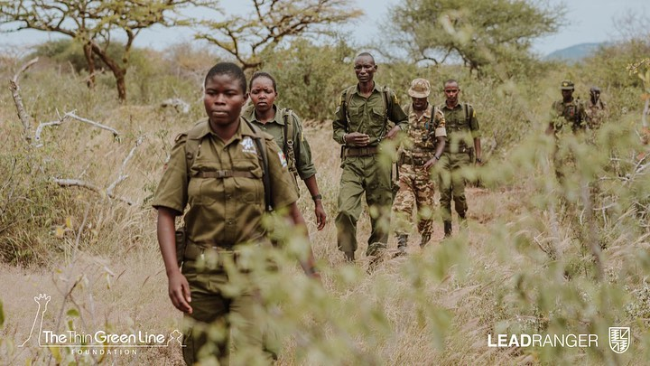 Leonardo DiCaprio Instagram: This  I stand with the world's rangers, who are on the front line of conservatio...