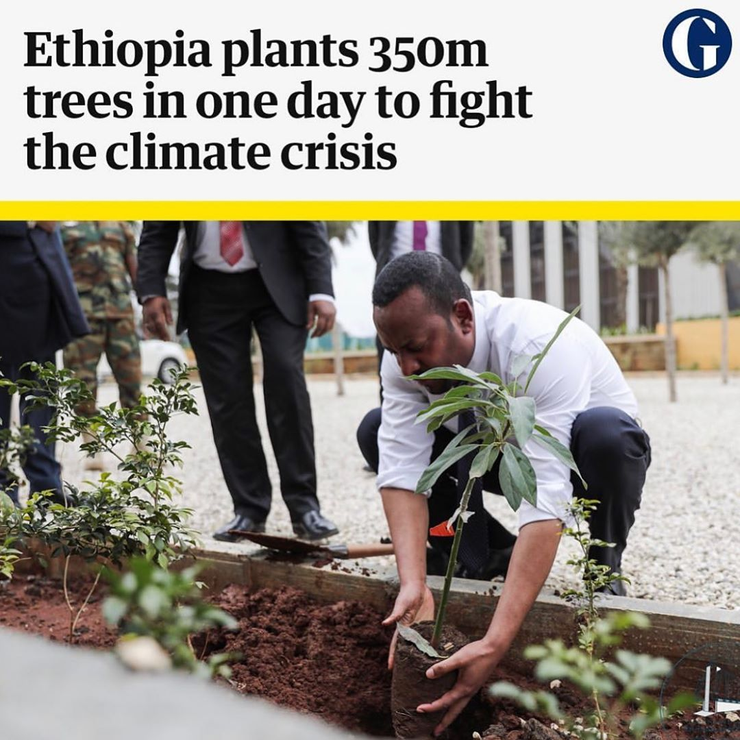 Leonardo DiCaprio Instagram:     Ethiopians have planted about 350m trees in a single day as part of a nation...