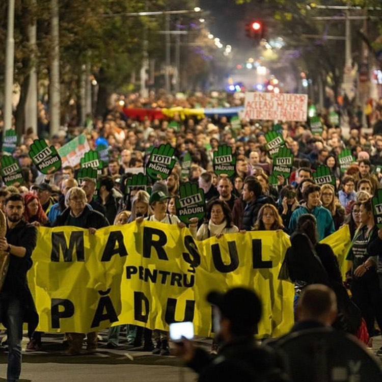 Leonardo DiCaprio Instagram:    More than 4000 people marched last night on the streets of Bucharest, demandi...
