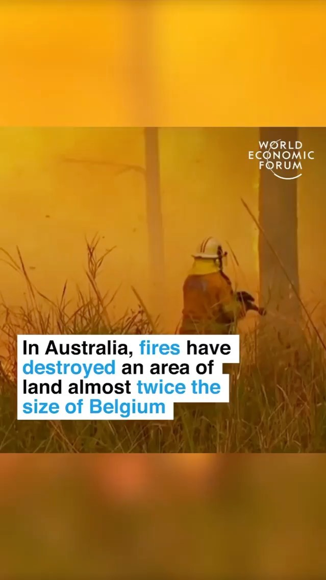 Leonardo DiCaprio Instagram: Repost IGTV from  2019 was Australia's hottest and driest year on record. And th...