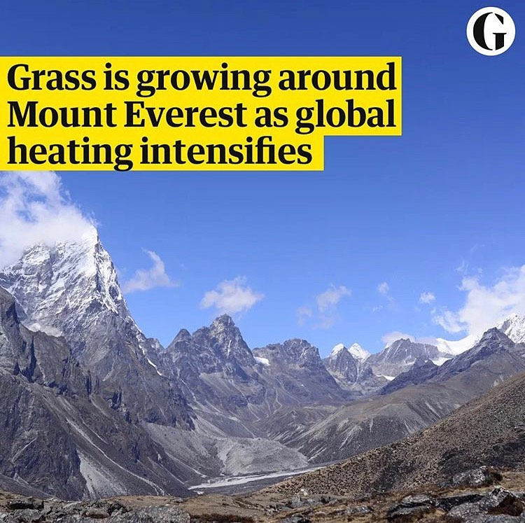 Leonardo DiCaprio Instagram: Shrubs and grasses are springing up around Mount Everest and across the Himalaya...